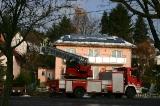 Der Wilhelmsdorfer Weihnachtsbaum 2008