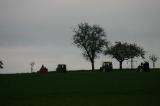 Traktortreff 2010