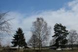 Frühling in Wilhelmsdorf 2013