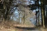 Fruehling in Wilhelmsdorf 2013_2